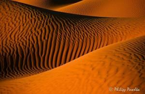 philippe pawelka expo photo desert