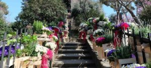 festival-fleur-poble-espanyol