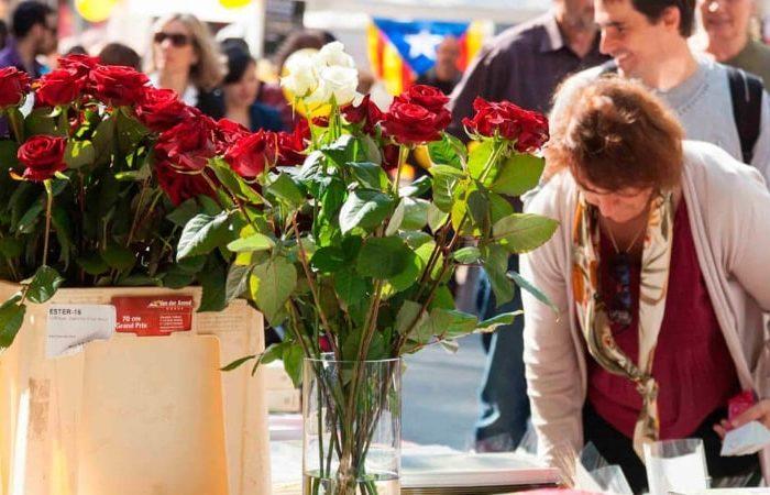 Sant Jordi – Portes ouvertes et tradition à Barcelone