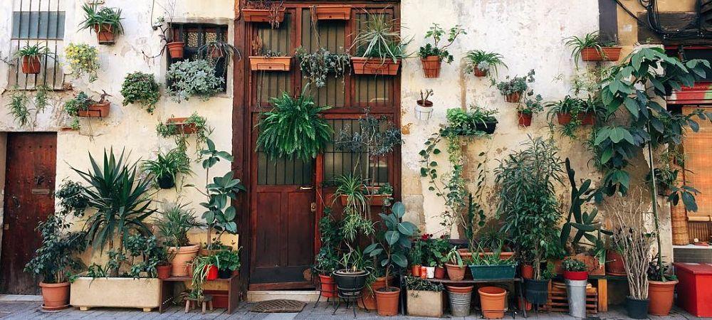 maison la plus photogénique